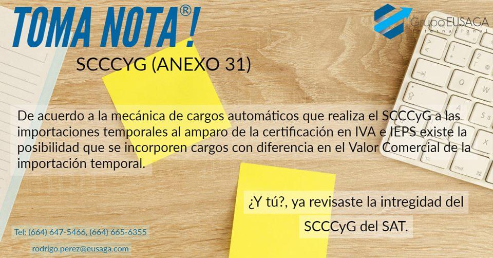 SCCCYG (ANEXO 31)